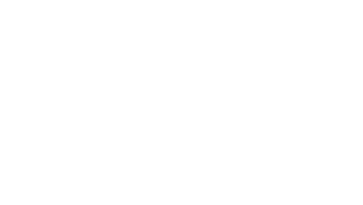 Golden Goose Project in Paraguay